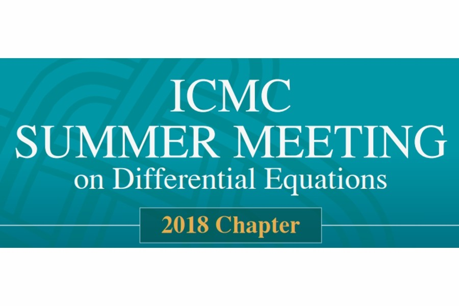 ICMC Summer Meeting on Differential Equations 2018 Chapter